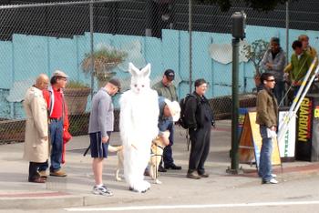 Bunny_walker