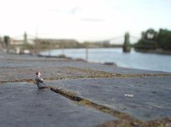 River_1_blog